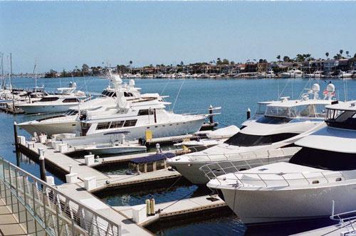 yachts at berth in a marina